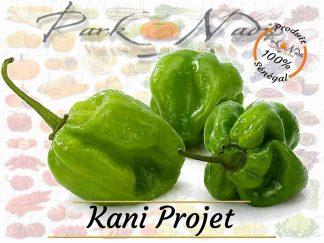 Kani Projet